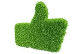 mano verde me gusta